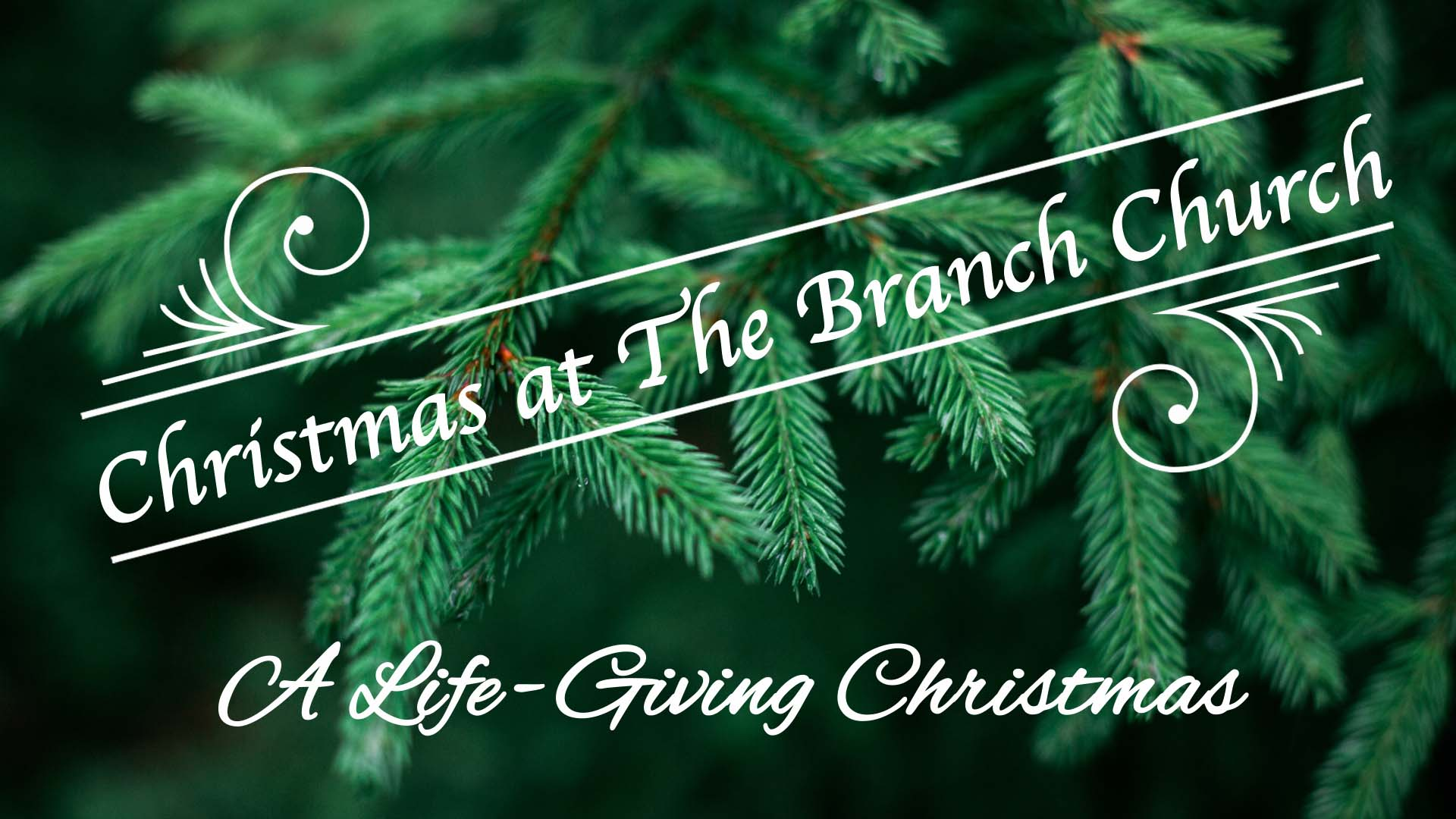 A Life Giving Christmas – Anticipating God's Gift